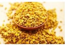 Пыльца – сокровищница пищевых и лекарственных веществ.