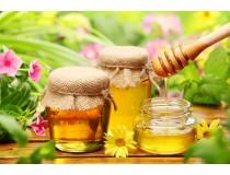Мёд пчелиный и диета