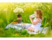 Пчелиная пыльца – отличный элемент питания детей
