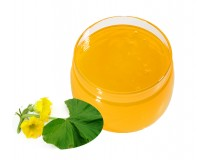 Мёд тыквенный