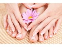 Лечебные свойства прополиса в борьбе с грибком ногтей