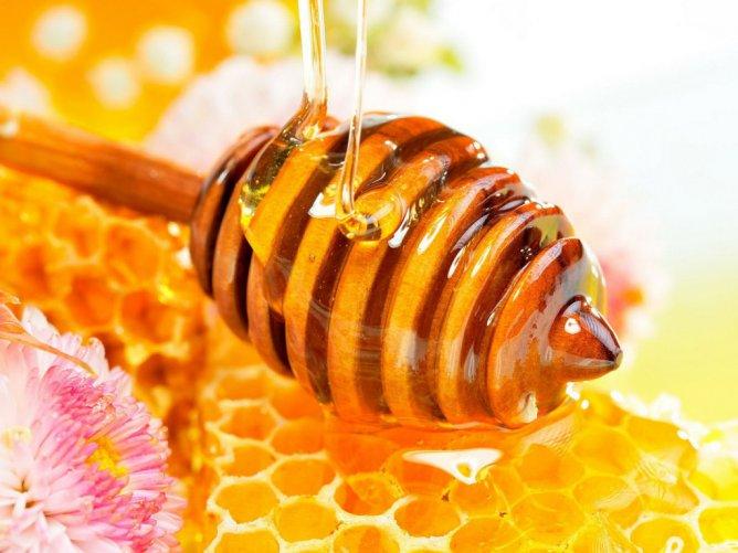 Мед в москве